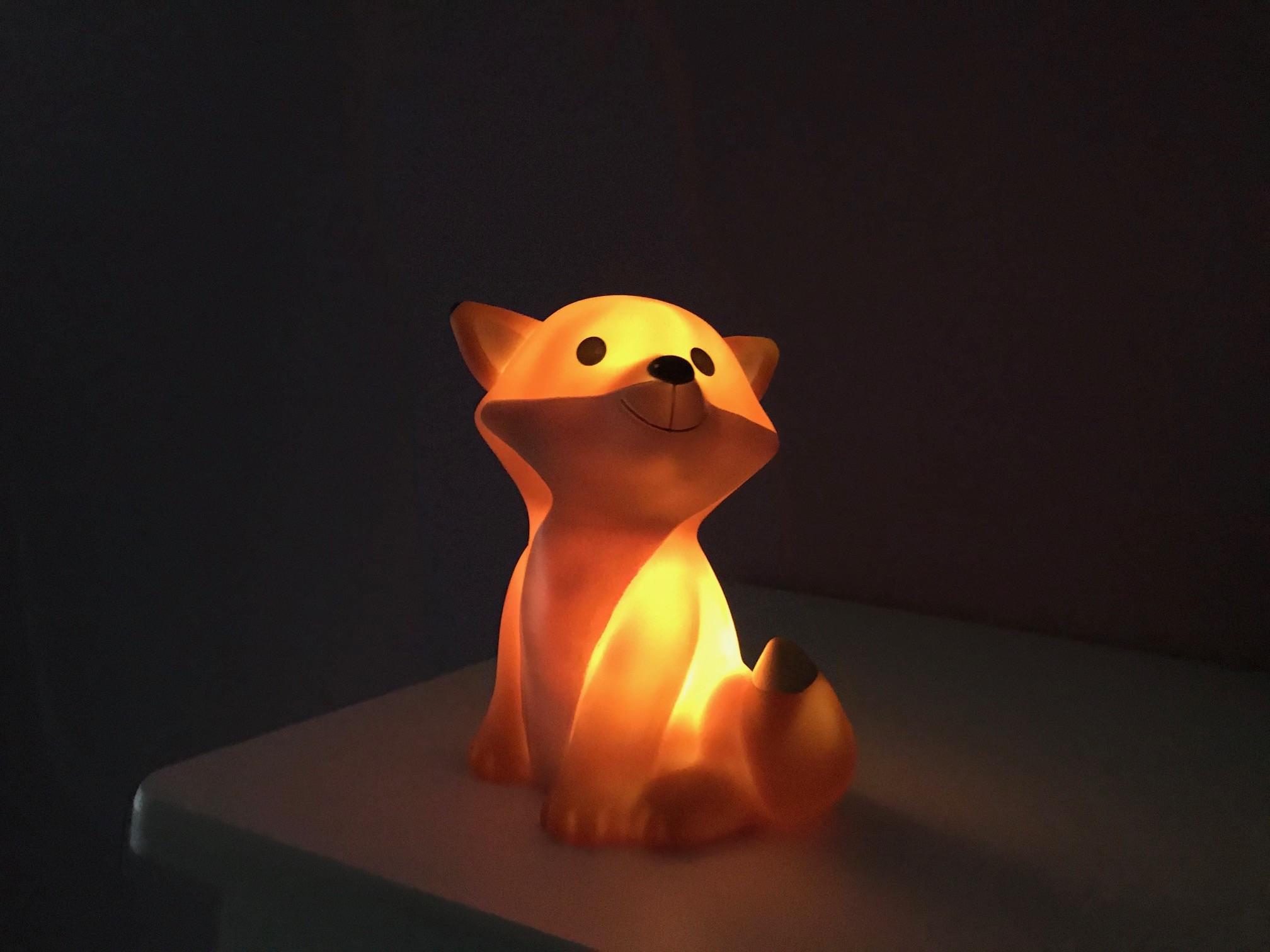 nachtlampje vos