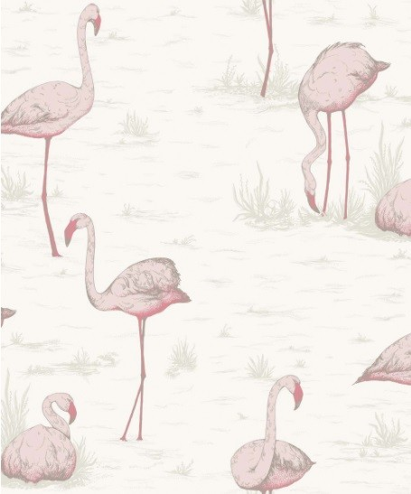 cole & son flamingo behang