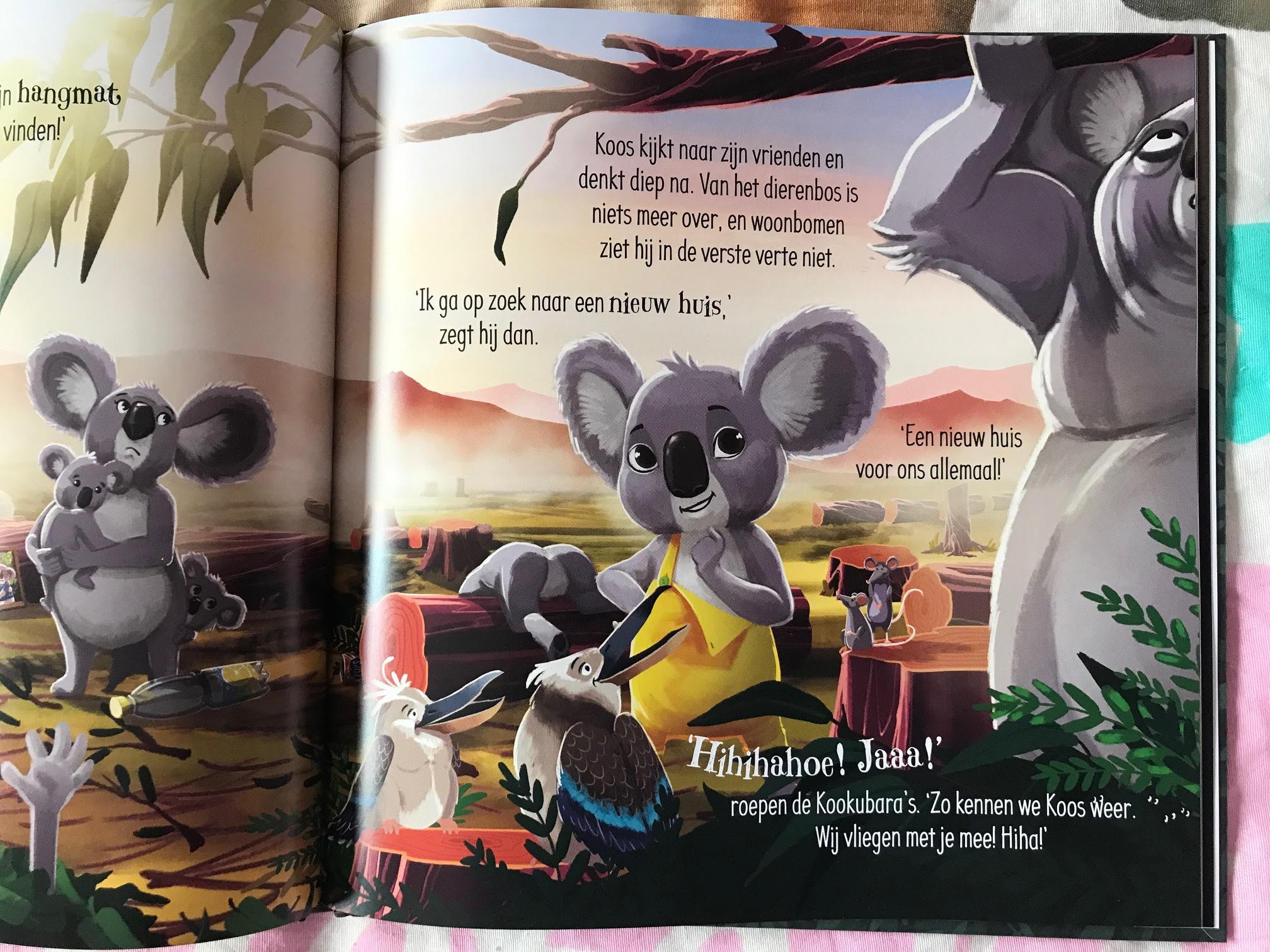 koos zoekt een huis kinderboek