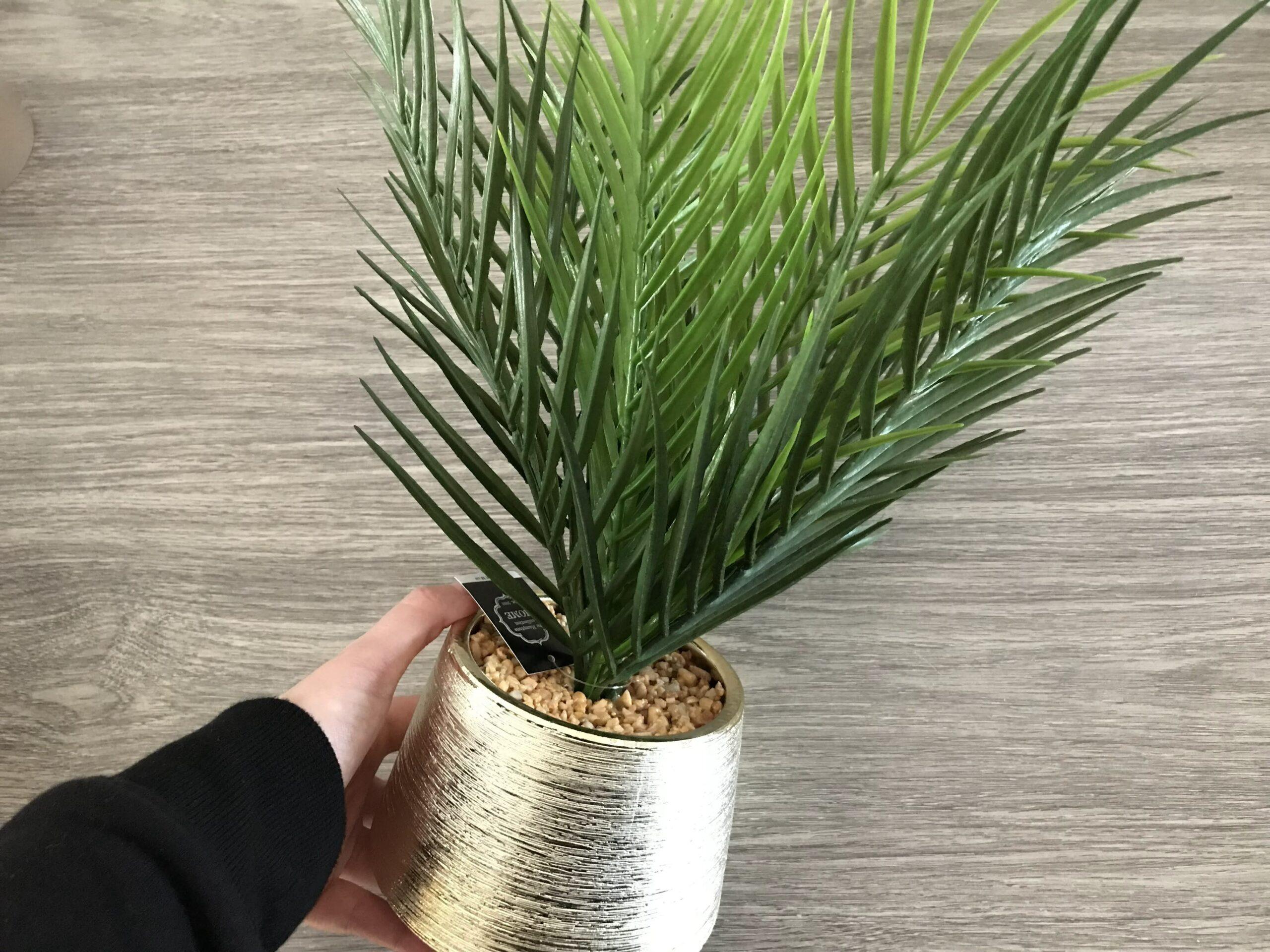 kunst palmboom action